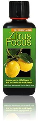 Zitrus Focus 300 ml Düngerkonzentrat, Flüssigdünger
